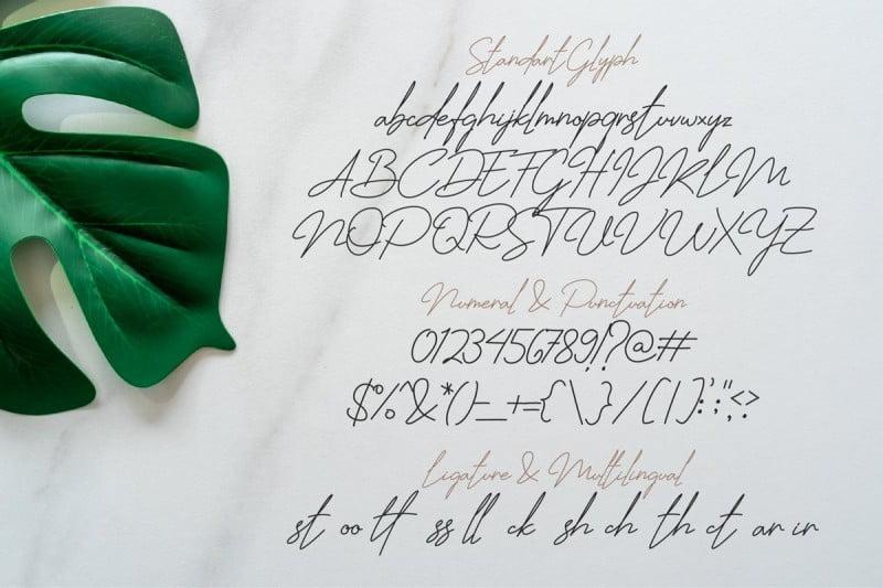 Jhenyta水笔纤细优美连写签名英文字体下载