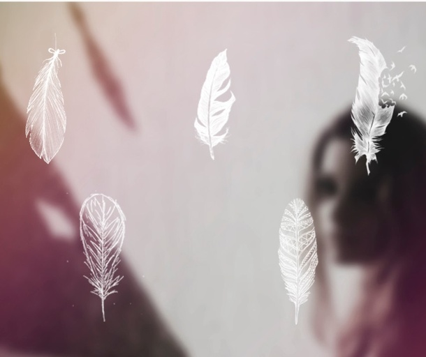 光滑镂空的羽毛ps笔刷预设下载