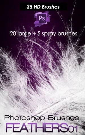 25个高清羽毛 羽绒PS笔刷素材下载