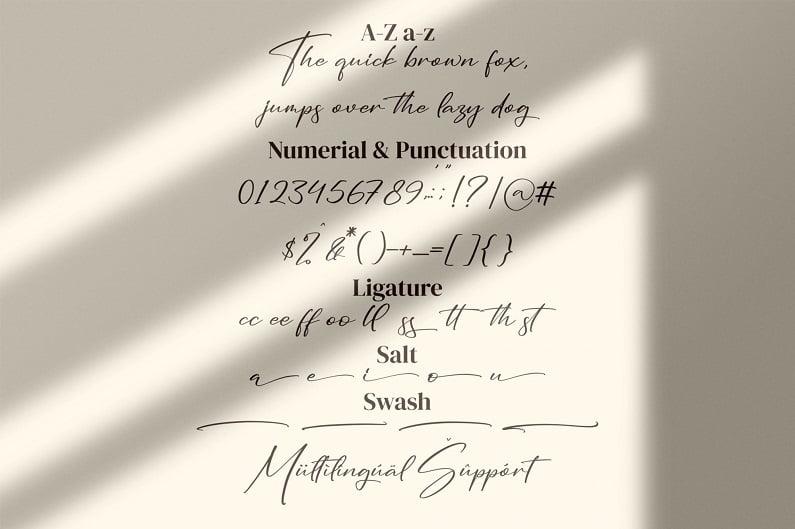 seethara适合名片英文烫金签名的字体 钢笔优雅速写潦草字母